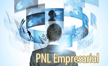 pnl empresarial